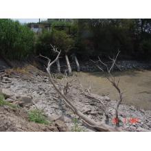 Αντλιοστάσιο στον Πηνειό ποταμό - Λειψυδρία  2007