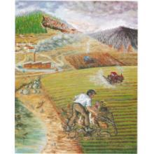 Προστασία Περιβάλλοντος και Γεωργικές Δραστηριότητες